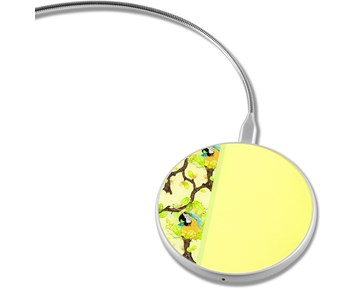 Limited Label Yellow Parrots 10W Qi Charger